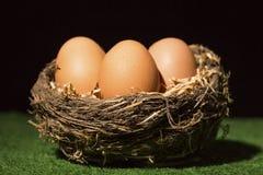 Uova di Pasqua dei paques di Joyeuses Fotografie Stock Libere da Diritti