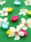 Uova di Pasqua Del cioccolato con i fiori della sorgente Immagine Stock