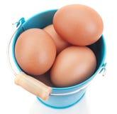 Uova di Pasqua Del pollo in un secchio blu. Immagini Stock Libere da Diritti