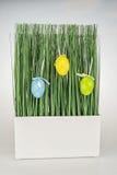 Uova di Pasqua dell'erba verde Fotografia Stock