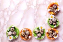 Uova di Pasqua della quaglia Fotografia Stock