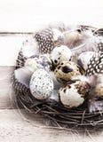 Uova di Pasqua della quaglia in nido su di legno luminoso rustico Immagine Stock Libera da Diritti