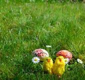 Uova di Pasqua dipinte variopinte e piccoli polli su un'erba verde Fotografia Stock