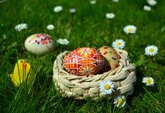 Uova di Pasqua dipinte variopinte su un canestro su un'erba verde Fotografie Stock Libere da Diritti