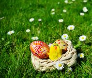 Uova di Pasqua dipinte variopinte su un canestro su un'erba verde Fotografia Stock Libera da Diritti