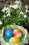 Uova di Pasqua e bucaneve Fotografie Stock Libere da Diritti