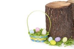 Uova di Pasqua e canestro dal ceppo di albero Immagine Stock Libera da Diritti