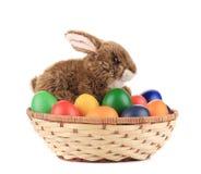 Uova di Pasqua e canestro isolati. Immagine Stock