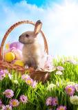 Uova di Pasqua e coniglietto di pasqua decorati cestino Fotografia Stock
