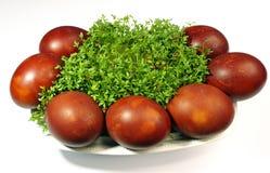 Uova di Pasqua e crescione Immagini Stock