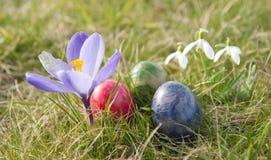 Uova di Pasqua E dei fiori Fotografia Stock