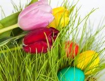 Uova di Pasqua e dei tulipani Fotografia Stock Libera da Diritti