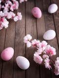 Uova di Pasqua e fiore di ciliegia Fotografia Stock Libera da Diritti