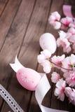 Uova di Pasqua e fiore di ciliegia Fotografie Stock