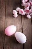 Uova di Pasqua e fiore di ciliegia Immagini Stock Libere da Diritti