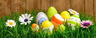 Uova di Pasqua e fiori in erba Immagini Stock Libere da Diritti