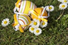 Uova di Pasqua e margherite Immagini Stock Libere da Diritti