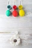 Uova di Pasqua e pitture Fotografia Stock