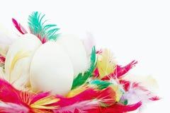 Uova di Pasqua e piume Fotografia Stock