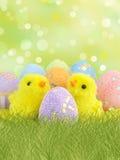 Uova di Pasqua e polli Immagine Stock Libera da Diritti