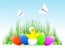 Uova di Pasqua e pollo. Fotografia Stock Libera da Diritti