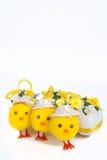 Uova di Pasqua e pollo Fotografie Stock