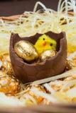 Uova di Pasqua e pulcini Immagini Stock Libere da Diritti