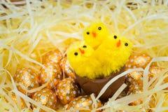 Uova di Pasqua e pulcini Fotografia Stock Libera da Diritti