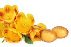 Uova di Pasqua e tulipani Fotografia Stock Libera da Diritti