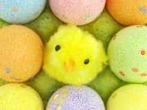 Uova di Pasqua E un pollo in una cassa delle uova Fotografia Stock