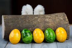 Uova di Pasqua ed orecchie colorate del coniglietto dietro il ceppo di legno Immagine Stock