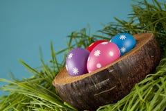 Uova di Pasqua In erba Immagini Stock Libere da Diritti