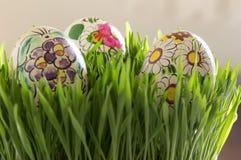 Uova di Pasqua In erba verde fresca immagini stock libere da diritti