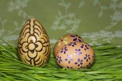 Uova di Pasqua In erba verde fresca Fotografia Stock Libera da Diritti