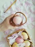 Uova di Pasqua Felici fotografia stock libera da diritti