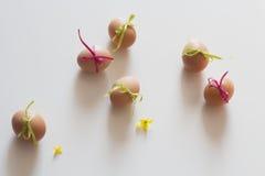 Uova di Pasqua felici su fondo bianco Immagini Stock