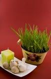 Uova di Pasqua Impostate Fotografia Stock