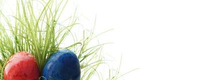 Uova di Pasqua nascoste in foglie verdi alte di erba Immagine Stock