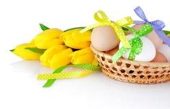 Uova di Pasqua nel canestro e nei tulipani gialli isolati su un bianco Fotografia Stock Libera da Diritti