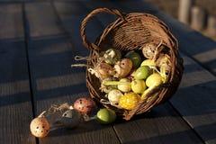 Uova di Pasqua nel canestro su superficie di legno rustica Fotografia Stock Libera da Diritti