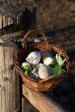 Uova di Pasqua nel canestro su superficie di legno rustica Immagine Stock