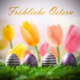 Uova di Pasqua Nell'erba Fotografie Stock