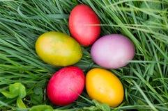 Uova di Pasqua nell'erba verde Fotografia Stock