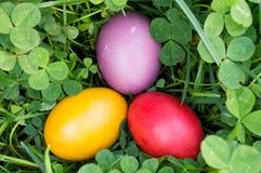 Uova di Pasqua nell'erba verde Fotografia Stock Libera da Diritti