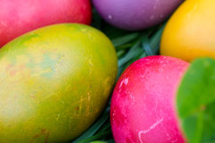 Uova di Pasqua nell'erba verde Immagine Stock Libera da Diritti