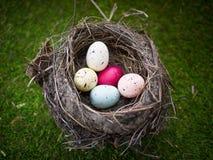 Uova di Pasqua In nido immagine stock