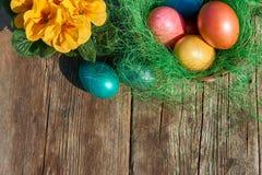 Uova di Pasqua In nido Immagini Stock