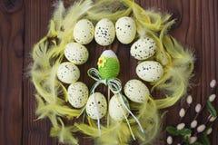 Uova di Pasqua in nido ed in piuma Fotografia Stock Libera da Diritti