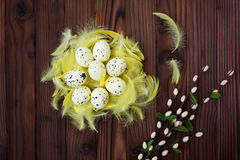 Uova di Pasqua in nido ed in piuma Fotografie Stock Libere da Diritti