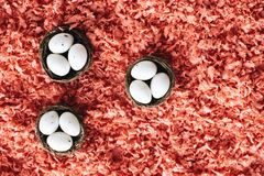 Uova di Pasqua in piccoli canestri fotografia stock libera da diritti